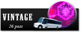 Cheap Chicago Party Bus